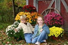 Crianças com mums da queda Foto de Stock Royalty Free