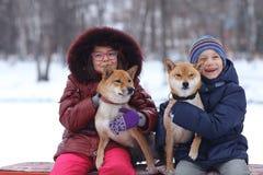crianças com os cães no parque do inverno fotografia de stock royalty free