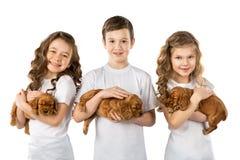 Crianças com os puppys isolados no fundo branco Amizade do animal de estimação da criança Imagens de Stock