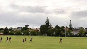 Crianças da escola que correm através do campo filme