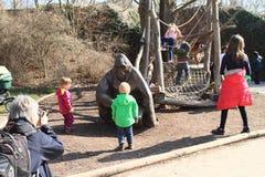 Crianças e gorila Fotografia de Stock Royalty Free