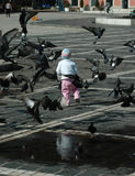 Crianças e pombos Imagens de Stock