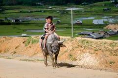 Crianças em MU Cang Chai, Vietname Fotografia de Stock