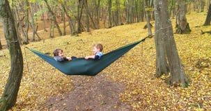 Crianças felizes que apreciam o dia do outono na floresta video estoque