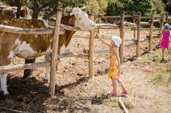 Crianças na exploração agrícola Fotografia de Stock Royalty Free