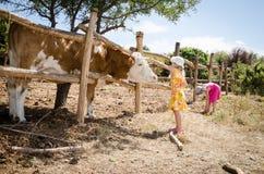 Crianças na exploração agrícola Foto de Stock Royalty Free