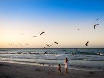 Crianças na praia que olham os pássaros de mar Fotos de Stock Royalty Free