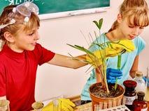 Crianças na turma de Biologia foto de stock royalty free