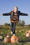 Crianças no campo da abóbora fotos de stock royalty free