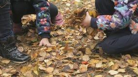 Crianças pequenas desconhecidas no parque outonal video estoque