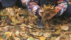 Crianças pequenas desconhecidas no parque outonal vídeos de arquivo