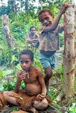 Crianças pequenas do Papuan do tribo de Korowai Foto de Stock