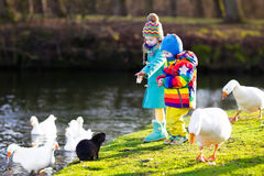 Crianças que alimentam a lontra no parque do outono Imagens de Stock Royalty Free