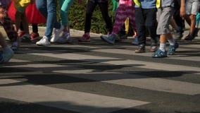 Crianças que andam horas de verão da faixa de travessia vídeos de arquivo