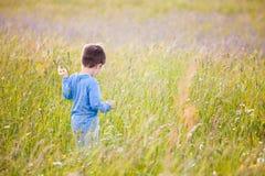 Crianças que escolhem flores em um prado fotos de stock