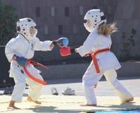 Crianças que fazem o karaté das artes marciais foto de stock royalty free
