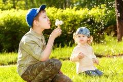 Crianças que fundem dentes-de-leão imagens de stock royalty free