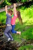 Crianças que jogam nas madeiras imagens de stock