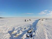 Crianças que jogam no mar gelado fotografia de stock royalty free