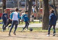 Crianças que jogam o futebol no parque em um dia ensolarado fotos de stock royalty free