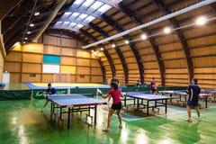 Crianças que jogam o sibilo Pong Fotos de Stock Royalty Free