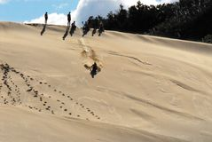 Crianças que têm o grande divertimento que desliza abaixo de uma duna de areia enorme imagem de stock