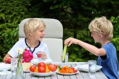 Crianças que têm o piquenique saudável fora Imagem de Stock Royalty Free