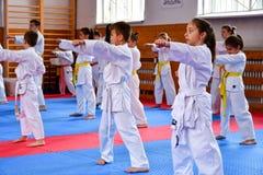 crianças que treinam o karaté imagens de stock