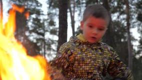 Crian?as desabrigadas crian?as dos refugiados Ajustando o fogo ? natureza Flora e fauna que queimam-se Natureza no perigo devido  vídeos de arquivo