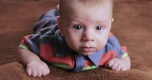 A crian?a do menino aprende rastejar video estoque