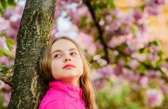 crian?a pequena da menina na flor da flor da mola Aprecie o cheiro da flor macia Conceito da flor de Sakura Flor lindo e fêmea fotos de stock royalty free