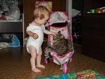 A crian?a rola seu gato grande em um carrinho de crian?a pequeno do brinquedo do beb? fotos de stock