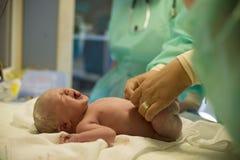 Criança após o nascimento Fotos de Stock Royalty Free