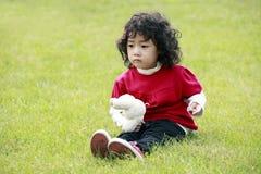 Criança asiática na grama. Foto de Stock Royalty Free