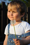 Criança com blow-ball Fotos de Stock