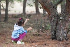 Criança e esquilo Fotos de Stock Royalty Free