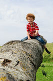 Criança feliz que senta-se no tronco de árvore Fotografia de Stock