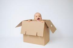 Criança na caixa Foto de Stock Royalty Free