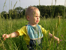 Criança na erva Imagens de Stock Royalty Free