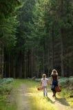 Crianças na floresta Foto de Stock Royalty Free