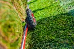 Criando o campo de grama novo Imagem de Stock Royalty Free