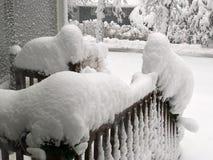 Criaturas da neve formadas após o blizzard em New Hampshire imagem de stock royalty free