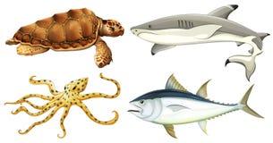Criaturas diferentes do mar ilustração royalty free