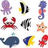 Criaturas do mar Fotografia de Stock