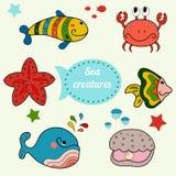 Criaturas lindas del mar Imágenes de archivo libres de regalías