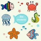 Criaturas lindas del mar Fotografía de archivo libre de regalías