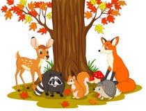 Criaturas salvajes de la historieta en el bosque ilustración del vector