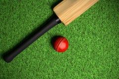 Cricektbal op groen gras stock afbeelding