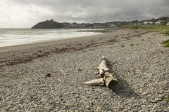 Cricieth strand Royaltyfri Foto