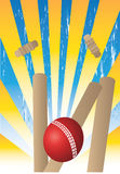 Cricket illustration stock